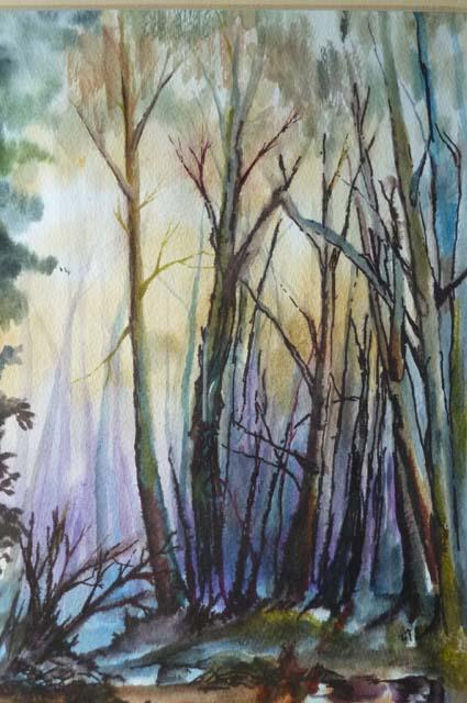 winter woodland2